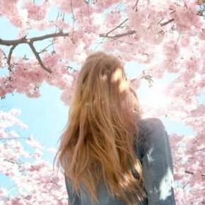 Inspiration: Spring Set onFire
